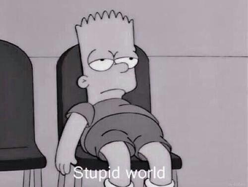 stupid_world
