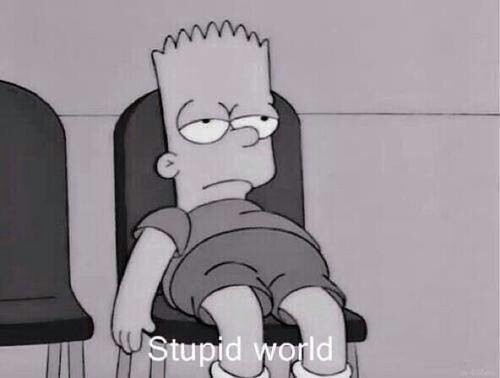 stupid_world